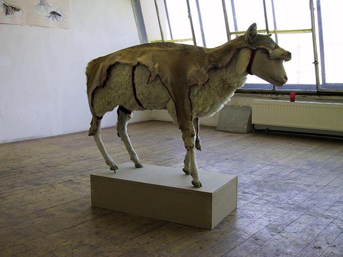 Das Schaf - als Opfer- ertarnt sich ihren gefürchteten Verfolger, 2000
